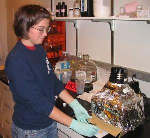 RET Program Teacher working in the lab.