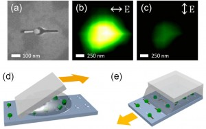 """Figure 1 – (a) SEM image of a nanorod/nanophosphor heterodimer created using template-assisted self-assembly. Upconverted light emission for excitation polarization (b) longitudinal and (c) transverse to the nanorod axis. Strong emission for longitudinal polarization reflects plasmonic enhancement of absorption. Schematics showing the (d) """"squeegee"""" and (e) capillary template-assembly methods developed."""