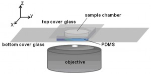 Figure 1. Sample chamber and imaging setup.