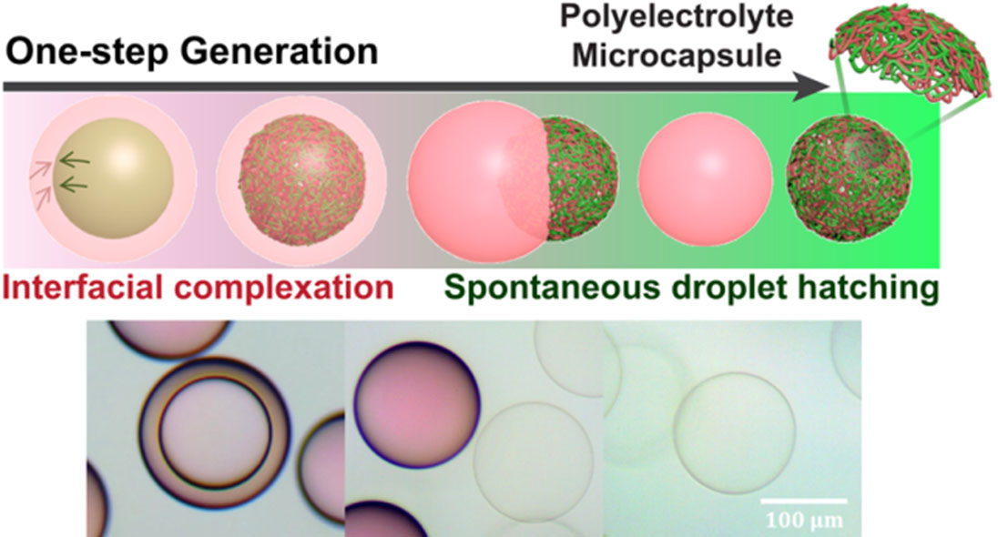 Schematic illustration (top) and optical microscope images (bottom) showing one-step generation of polyelectrolyte microcapsules using nanoscale interfacial complexation in emulsions (NICE).