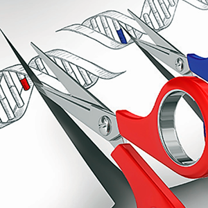 Ryan Frisch, Ph.D. / The CRISPR Craze: What is it?