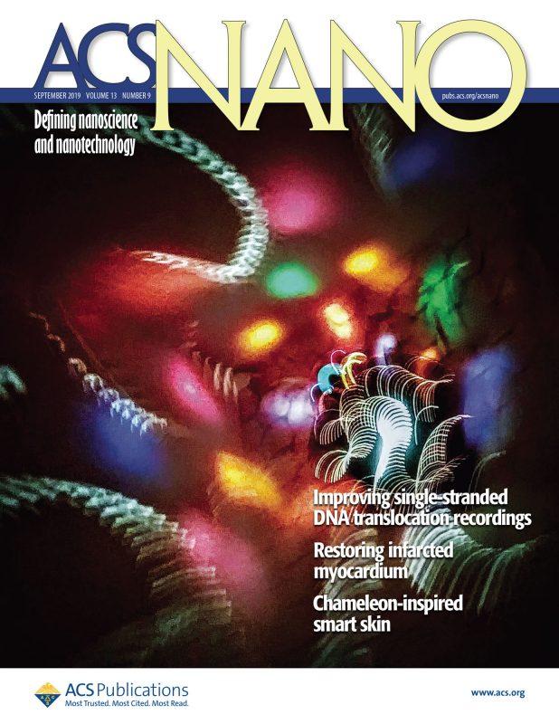 ACS Nano cover 2016, Drndic