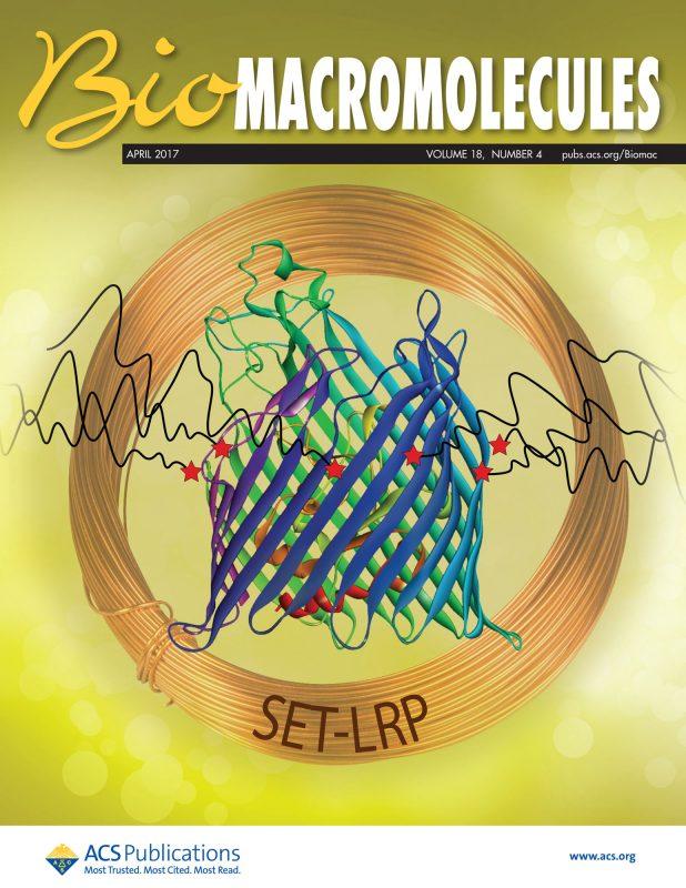 BiomacroMolecules cover 2017, Percec