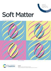 Kamien Soft Matter cover 2021